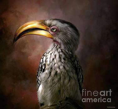 HornBill Birdie by Tara Richardson
