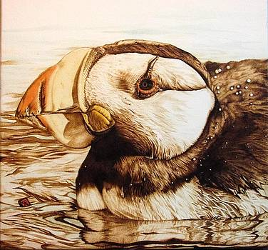 Horned Puffin by Cynthia Adams