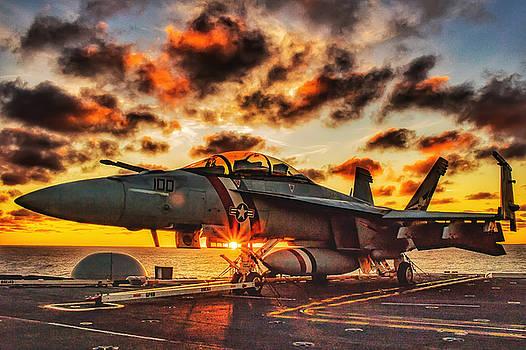 Hornet at sunrise by Derek Bratton