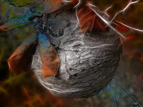 Stuart Turnbull - Hornets nest abstract