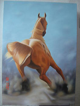 Horse 2 by Luis  Jesus