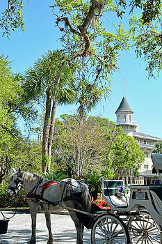 Horse and Carriage at Jekyll Island Club Hotel by Bruce Gourley