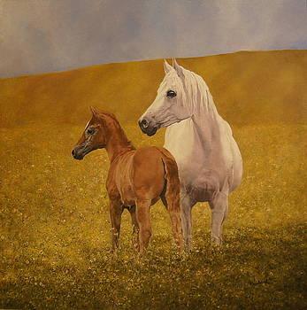 Horse and foal by Erna Goudbeek