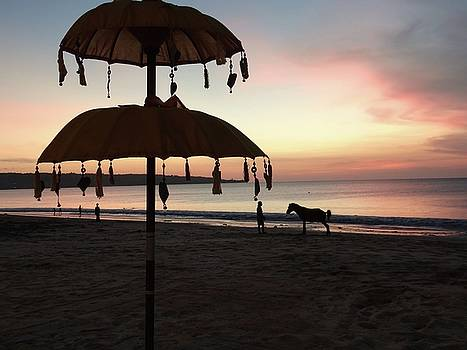 Horse And Sunset by Exploramum Exploramum