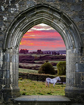 Horse at Sunrise in County Clare by James Truett