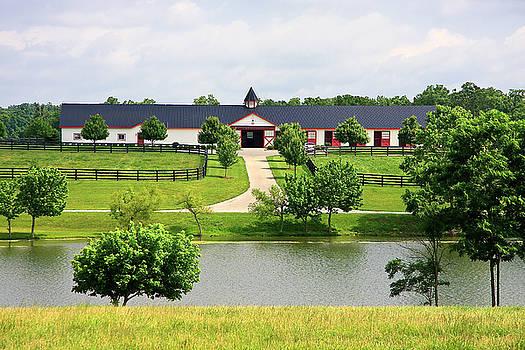 Jill Lang - Horse Barn