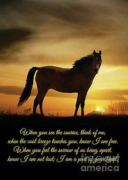 Horse Bereavement Sympathy Spiritual Poem by Stephanie Laird