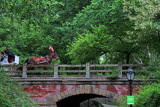Horse Carriage Central Park Tunnel by Donna Betancourt