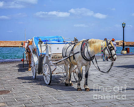 Patricia Hofmeester - Horse cart for tourists in Xania, Crete