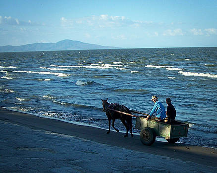 Johana - Horse Cart on the Beach