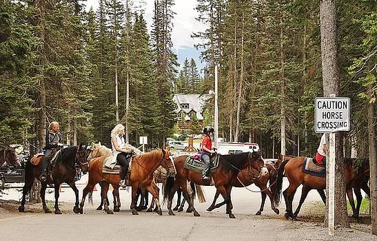 Horse Crossing by Al Fritz