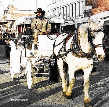 Regina Arnold - Horse-Drawn Buggy
