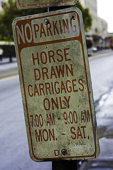 Chris Coffee - Horse Drawn Carriage Parking