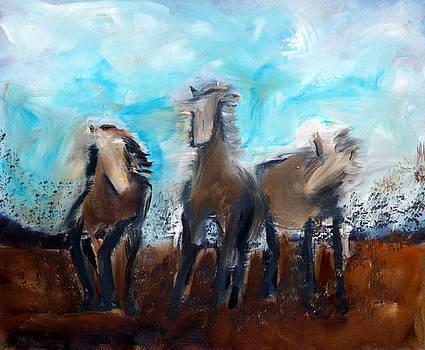 Horse Dream by Katy Hawk