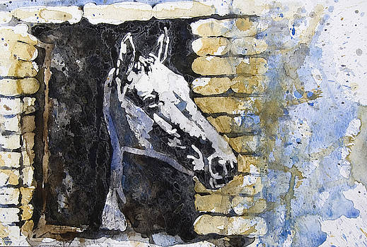 Horse by Ferah Wand