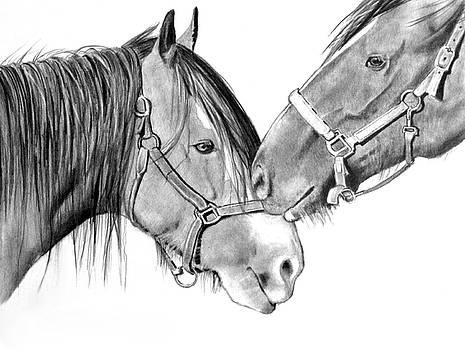 Joyce Geleynse - Horse Friends