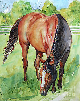 Horse Grazing by Maria's Watercolor