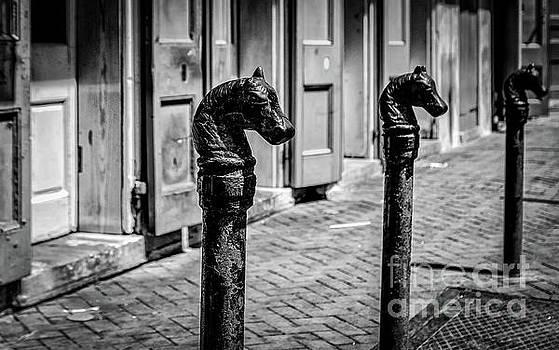 Kathleen K Parker - Horse Head Iron Posts French Quarter NOLA
