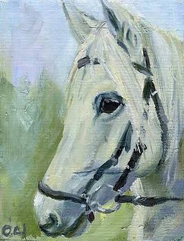 Horse Head by Lelia Sorokina
