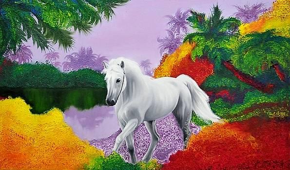 Horse  by Houda Khamlichi