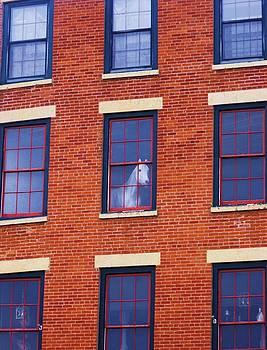 Horse in an Upstairs Window by Anna Villarreal Garbis
