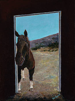 Horse in Doorway by Trish Campbell