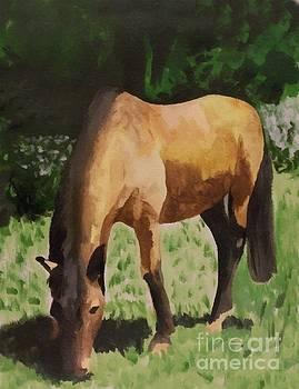 Horse by Abbie Shores