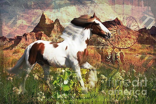 Kathryn Strick - Horse Medicine 2015