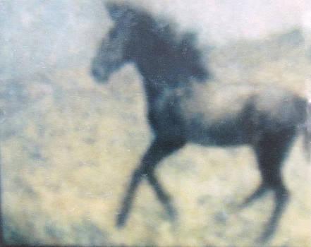 Horse on the Hillside by Glenda Crigger