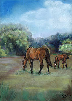Horse Pasture by Charlotte Yealey