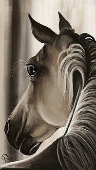 Horse by Pia Langfeld