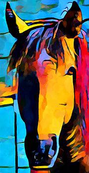 Horse Portrait by Chris Butler