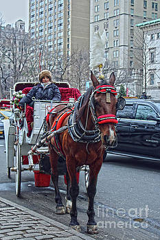Sandy Moulder - Horse Power