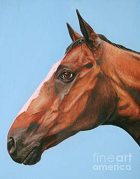 Horse by Rebecca Tiano