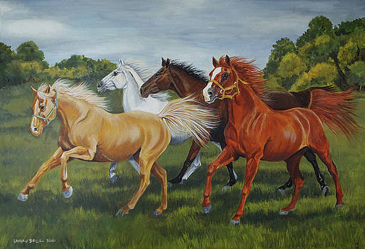 Horse Run by Laura Bolle