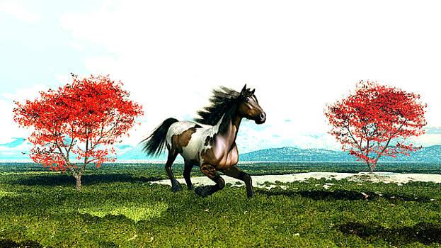 Horse Running by John Junek