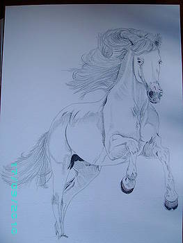 Horse sketch by Dion Halliday