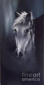 Horse Spirit by Lizzy Forrester