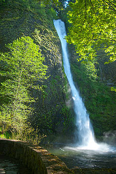 Horse Tail Falls by Sharon Crawford