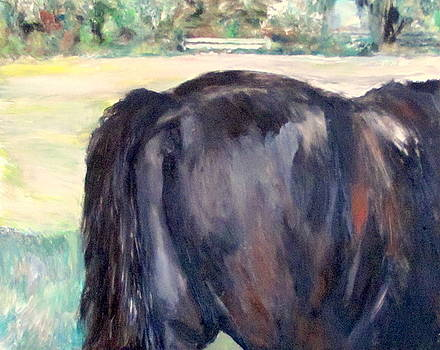 Horse Tail by Patrick Mills