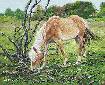 Horse with burnt tree by Martin Davey