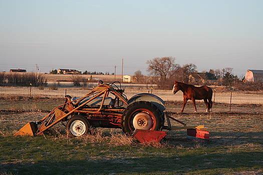 Horsepower by David S Reynolds