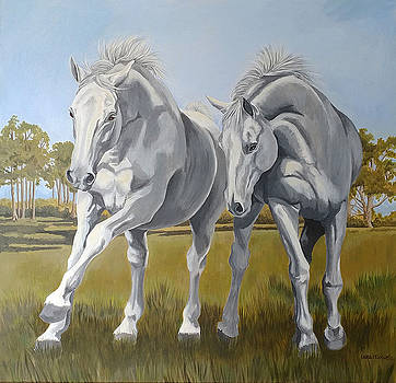 Horses at play by Laura Bolle