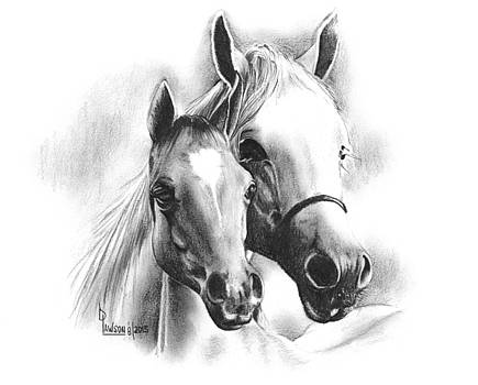 Horses by Dave Lawson