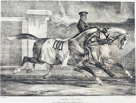 Theodore Gericault -  Horses Exercising