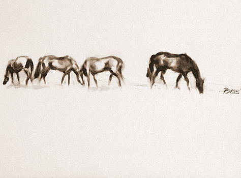 Horses Grazing by Patrick Mills