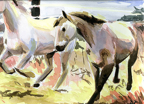 Horses in Late Morning Light by Jamie Lindenmeier