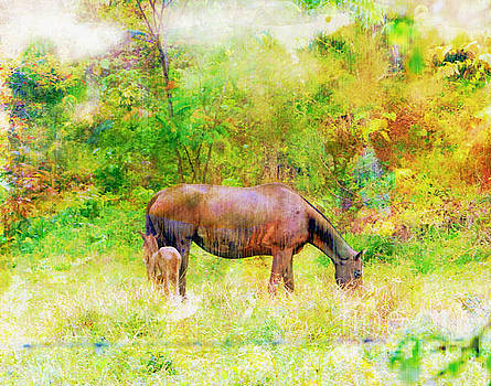 Horses In The Rain - Watercolor Style by Al Bourassa