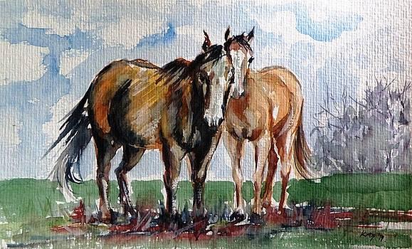 Horses by Kovacs Anna Brigitta