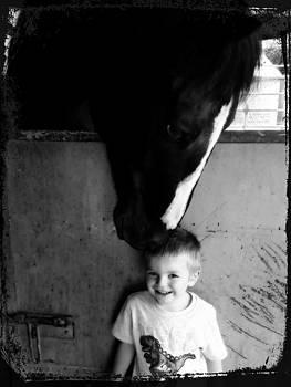 Horses Love by Amanda Eberly-Kudamik